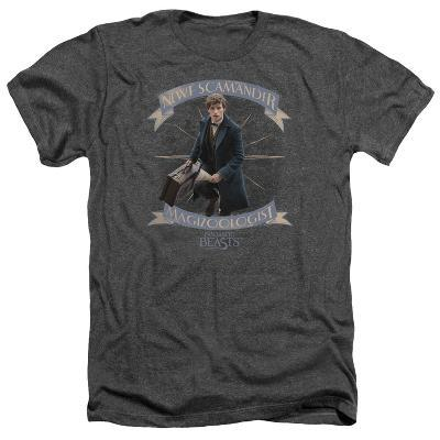 Fantastic Beasts- Newt Scamander Magizoologist