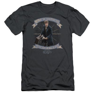 Fantastic Beasts- Newt Scamander Magizoologist (Premium)