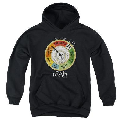 Youth Hoodie: Fantastic Beasts- Threat Gauge