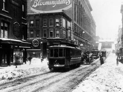 BloomingdaleIn The Snow