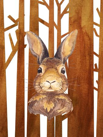 Rabbit In Forest Animal 2