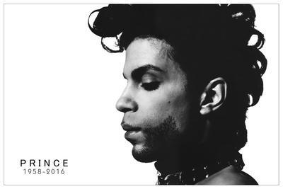 Prince - Profile