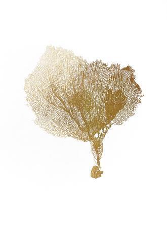 Gold Foil Sea Fan IV