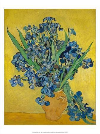 Irises, 1888