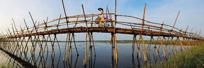 The Bamboo Bridge