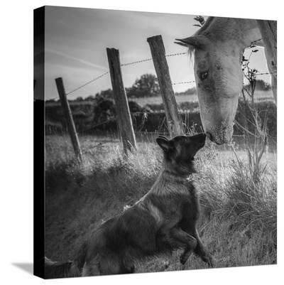 Friend's Kiss ;-)