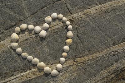 Coastal Heart