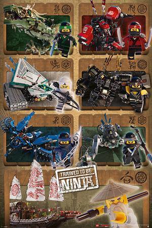 Lego Ninjago Movie - Ninjas and Mechs