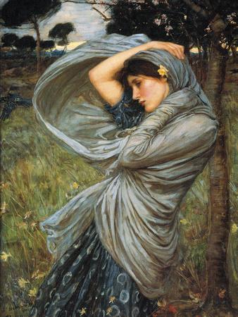 Boreas, 1903