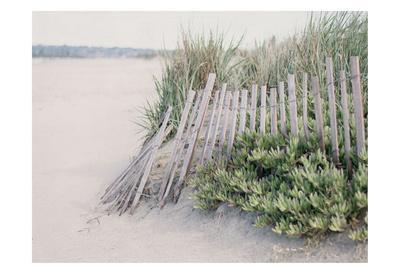 Steps To The Beach I