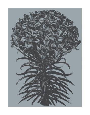 Lilies (Slate & Ink)