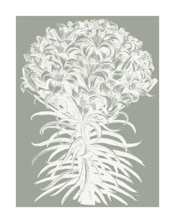 Lilies (Sage & Ivory)