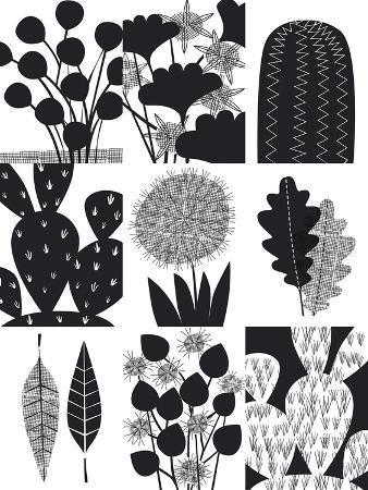Cacti Composite