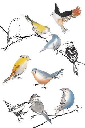 Bird Melody