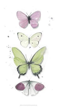 Summer Butterflies II