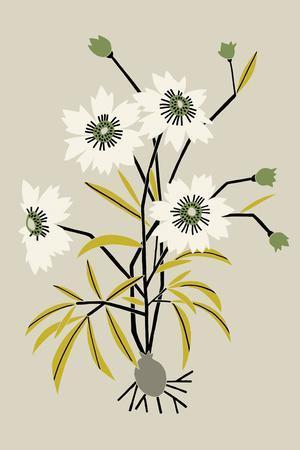 Simple Flora - White Flowers