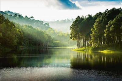 Mystic Forest Lake