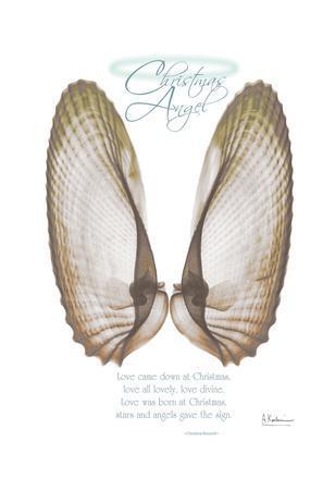 Christmas Morning Wings