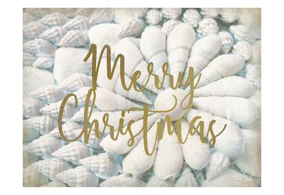 Merry Christmas Shells