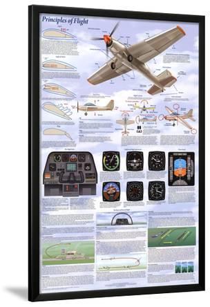 Principles of Flight Aerodynamic Educational Science Chart Poster