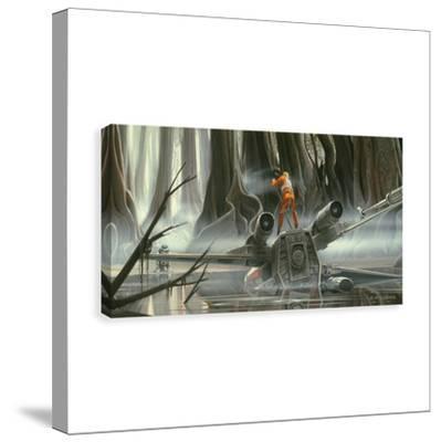 Star Wars Skywalker Dagobah Crash Printed Canvas