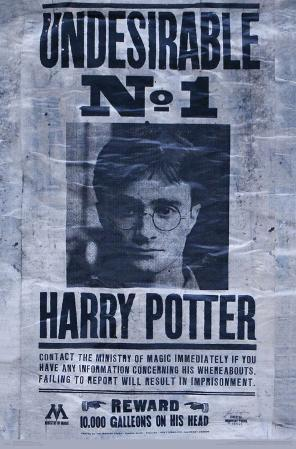 HARRY POTTER - UNDESIRABLE