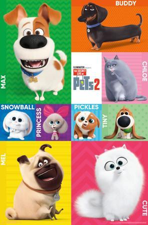 Secret Life of Pets 2 - Grid