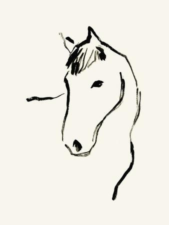 Equine Lines