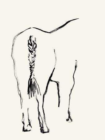 Braided Tail