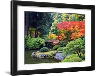 Fall Colors at Portland Japanese Gardens  Portland Oregon