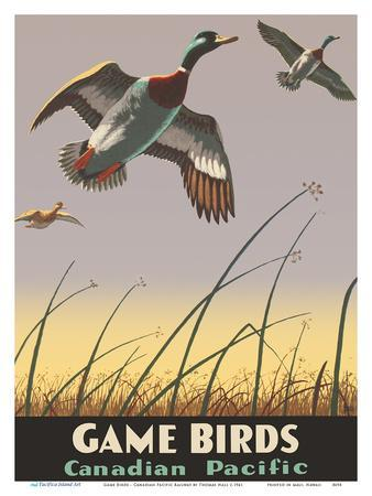 Game Birds - Canadian Pacific Railway