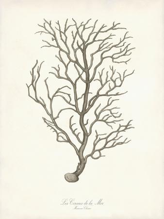 Greige Branch