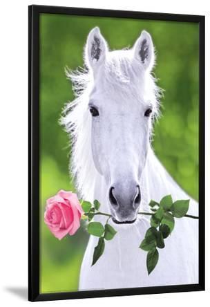 White Horse (Holding Pink Rose) Art Poster Print