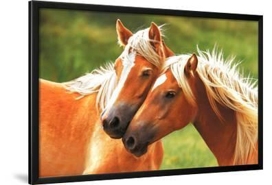 Horses (Blondes) Art Poster Print