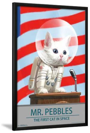 FALLOUT 4 - MR. PEBBLES