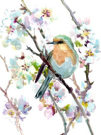 Robin And Apricot Tree Blossom 1