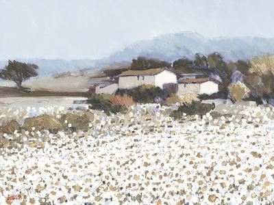 Tranquil Farm Near Bini