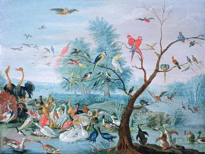 Tropical Birds in a Landscape