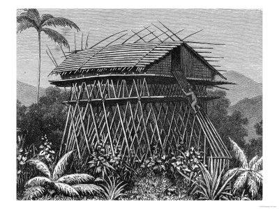 """House in the Arfak Village of Memiwa, New Guinea, from """"The History of Mankind,"""" by Prof. Friedrich"""