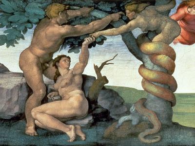 Sistine Chapel Ceiling (1508-12): the Fall of Man, 1510 (Post Restoration)