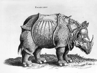 "Rhinocerous, No. 76 from ""Historia Animalium"" by Conrad Gesner (1516-65) Published in July 1815"