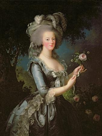 Marie Antoinette (1755-93) with a Rose, 1783