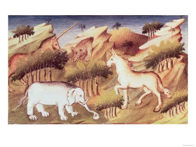Mythical Animals in the Wilderness
