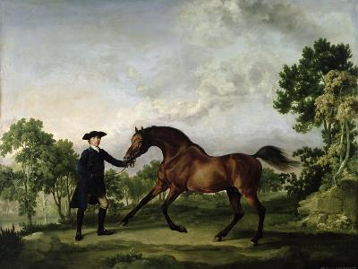 "The Duke of Ancaster's Bay Stallion ""Blank,"" Held by a Groom, circa 1762-5"