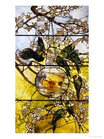 Parakeets and Gold Fish Bowl, 1893
