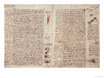 The Codex Hammer