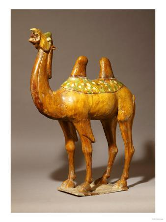 A Large Sancai Pottery Camel, Tang Dynasty 7th-10th Century