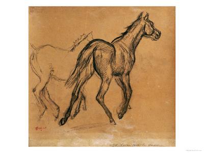 Horses, circa 1882
