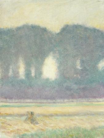 Fir Trees and a Corn Field, 1908