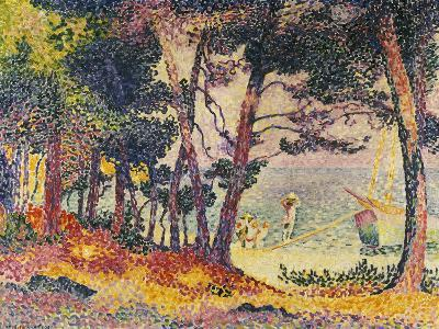 The Pine Wood (Provence), 1906